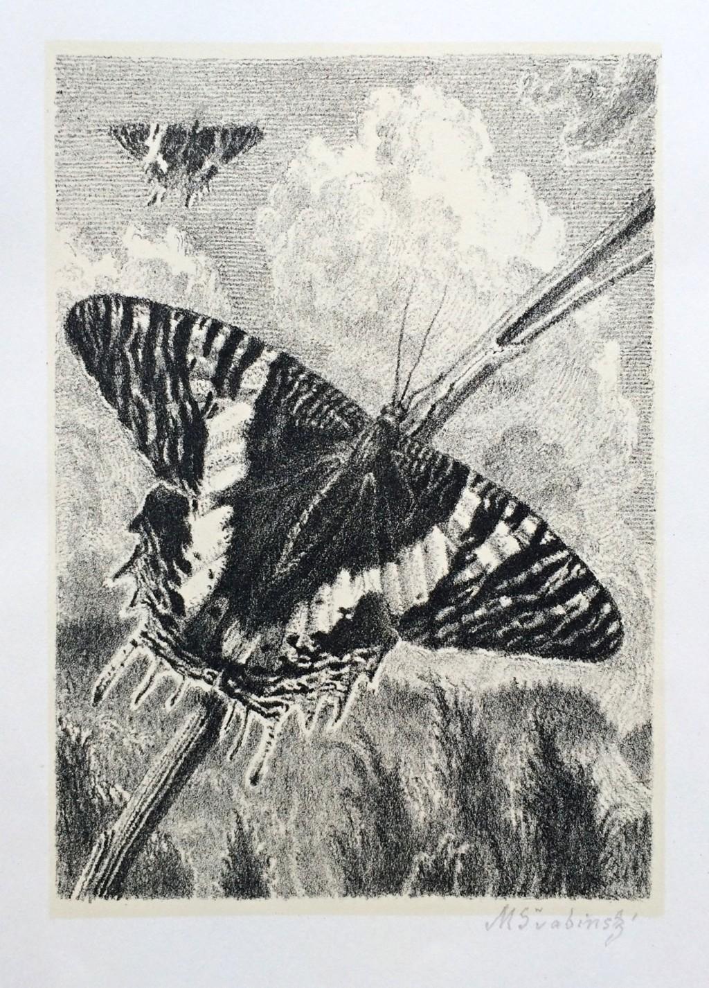 Švabinský Max (1873 - 1962) : Motýli