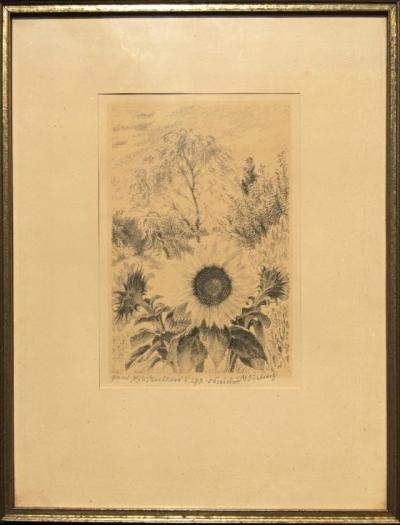 Švabinský Max (1873 - 1962) : Slunečnice