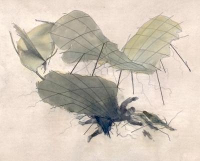 Lhoták Kamil (1912 - 1990) : Jak se člověk naučil létat