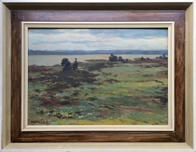 Panuška Jaroslav (1872 - 1958) : Svět u Rožmberka