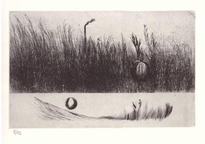 Lhoták Kamil (1912 - 1990) : Zakutálený míč